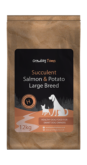 Succulent Salmon & Potato Large Breed Puppy Food