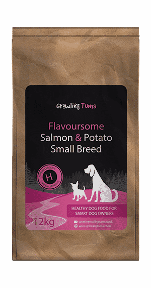 Flavoursome Salmon & Potato Small Breed