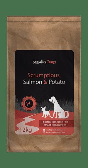 Salmon & Potato Dog Food