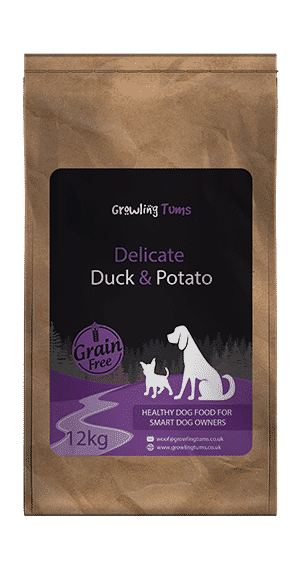 Delicate Duck & Potato