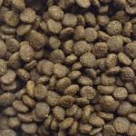 Flavoursome Salmon & Potato Kibble