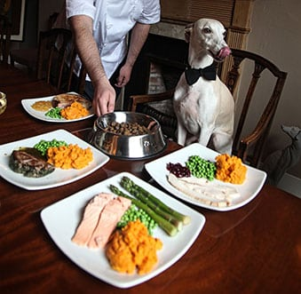 https://growlingtums.co.uk/wp-content/uploads/2015/05/DogChef2GTweb.jpg
