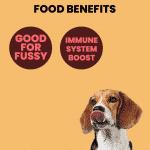 Scrumptious_Salmon_Benefits